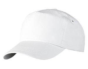 bejsbolki-s-logotipom
