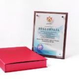 Диплом победителю регионального этапа всероссийского конкурса Российская организация высокой социальной эффективности
